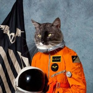 Klaxons — Surfing The Void