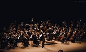 Осенние музыкальные фестивали